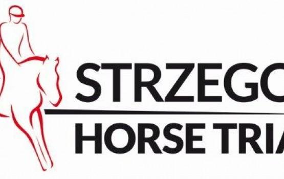 logo sht2015